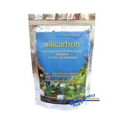 Silicarbon